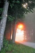 Sonnenaufgang in Hörbach