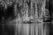 Spiegelung am Almsee