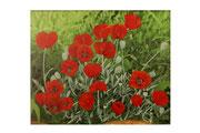 Pavots (Acrylique sur toile - 64 x 80 )
