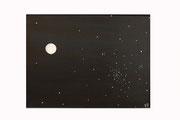 Cosmos (Acrylique sur toile - 45 x 60 )