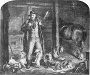 Dandie Dinmont et ses Terriers