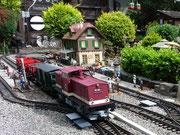 Harzkamel mit Güterzug