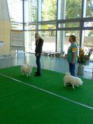 Ausstellung Eggersdorf