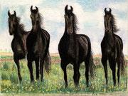 Los Cavallos パステル Yoshio Watanabe 2013