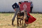 Naturalidad de Juan Miguel Sánchez 'Juan Miguel' ante su becerra