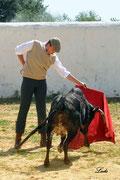 El portuense Gonzalo Capdevila en un buen natural