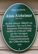 ImAginE 2012 meeting: Alzheimer plaque.
