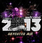 Silvester Cover 2013