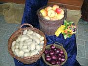 Kartoffeln, Zwiebel und Äpfel aus der Region