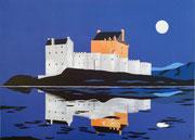 Nacht über Eilean Donan Castle 50x70