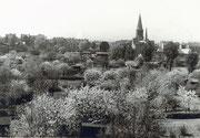 Dortmund-Körne Blick von Dortmund-Wambel aus der Schrebergartenanlage Friedlicher Nachbar Fotografie ca. 1950-1960