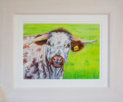 """Rufus""  £125    45.5 x 38 cms approx outside frame measurement"
