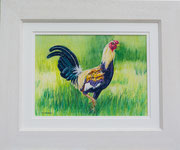 """""""Early Alarm Knosall"""" £125    45.5 x 38 cms approx outside frame measurement"""