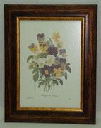 Floral & Plant 18 Gravoures Collection