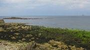 Montag: Die Fahrt nach Land's End führt am Meer vorbei (2 von 2).