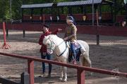 Ein ziviles Pferd (Zelter) eines reisenden Kaufmanns…
