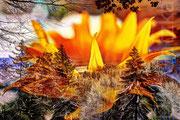 Sonnenblume über dem Isartal, 2016