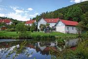 Teich bei der Hardtmühle mit Blick auf die Edelsteinschleiferei http://www.edelsteinschleiferei-lange.de in Bergfreiheit