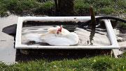 entspanntes baden