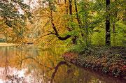 Herbststimmung im Herrnsheimer Schlosspark