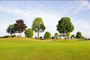 Hügellandschaft vom Golfplatz in Wattenheim