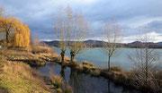 Erlacher See Januar 2012