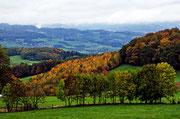 In der Nähe von Mackenheim