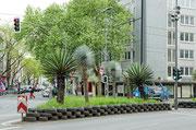 Palmeninsel mitten in der Stadt