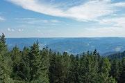 Schwarzwaldpanorama vom Brandenkopf