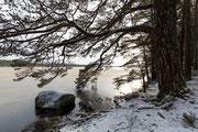 Loch Garten