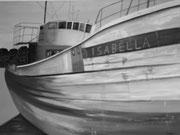 Isabella - 80 x 60 cm, Acrylfarben auf Keilrahmen, signiert und datiert 2015