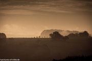 Morgenstimmung über dem Elbtal mit Blick auf die Festung Königstein