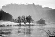 Winter an der Elbe mit der Festung Königstein 26.01.2013