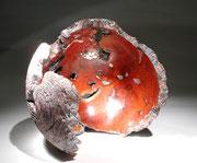 """Fragment"" ronce de manzanita - h 33 cm - 2004"