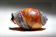 """""""Carambole longue"""" ronce de bruyère - h 12cm - 2008"""