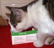 Die kleine WIOLA sagt ganz lieben Dank an ihre lieben ♥ Impfpaten Tierarztfamilie Schmidt in Cammer ♥