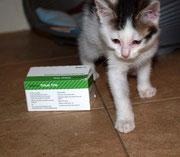 Der kleine LINUS sagt ganz lieben Dank an seine liebe ♥ Impfpatin Silke / Chicolino ♥