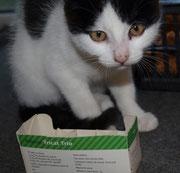 Die kleine FLORA sagt ganz lieben Dank an ihre lieben ♥ Impfpaten Tierarztfamilie Schmidt in Cammer ♥