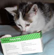 Die kleine ELA sagt ganz lieben Dank an ihre liebe ♥ Impfpatin Angelika Curk / Julchen 1 ♥