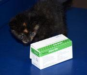 Die kleine SHAKIRA sagt ganz lieben Dank an ihre liebe ♥ Impfpatin Bine mit Menne ♥