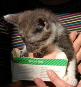 Der kleine ELIAS sagt ganz lieben Dank an seine liebe ♥ Impfpatin Angelika Curk / Julchen 1 ♥