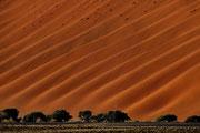 Duenenwellen im Namib - Naukluft - Park