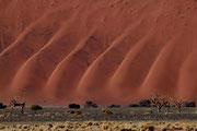 Sanfte Wellen - Namib-Naukluft-Park