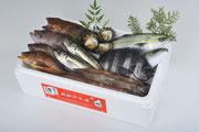 鮮魚セット例2
