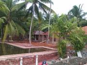 Die Liegeflächen um den Pool werden geschaffen