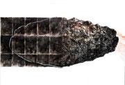 Consciencia fraccionada - Grafito, acuarela, lápiz blanco y barniz  - 2021 - 100 x 70 cm