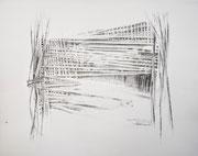 Oculto 4 - 2020 - Grafito, lápiz color 45 x 38 cm