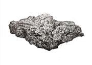 Consciencia habitable - grafito - 2021 - 60 x 42 cm