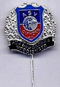 Ehrennadel  für besondere Verdienste