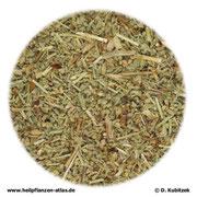 Bruchkraut (Herniariae herba)